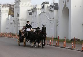 Конные прогулки вевропейских каретах