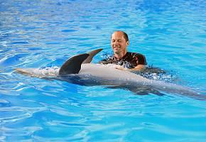 Выходные в дельфинарии